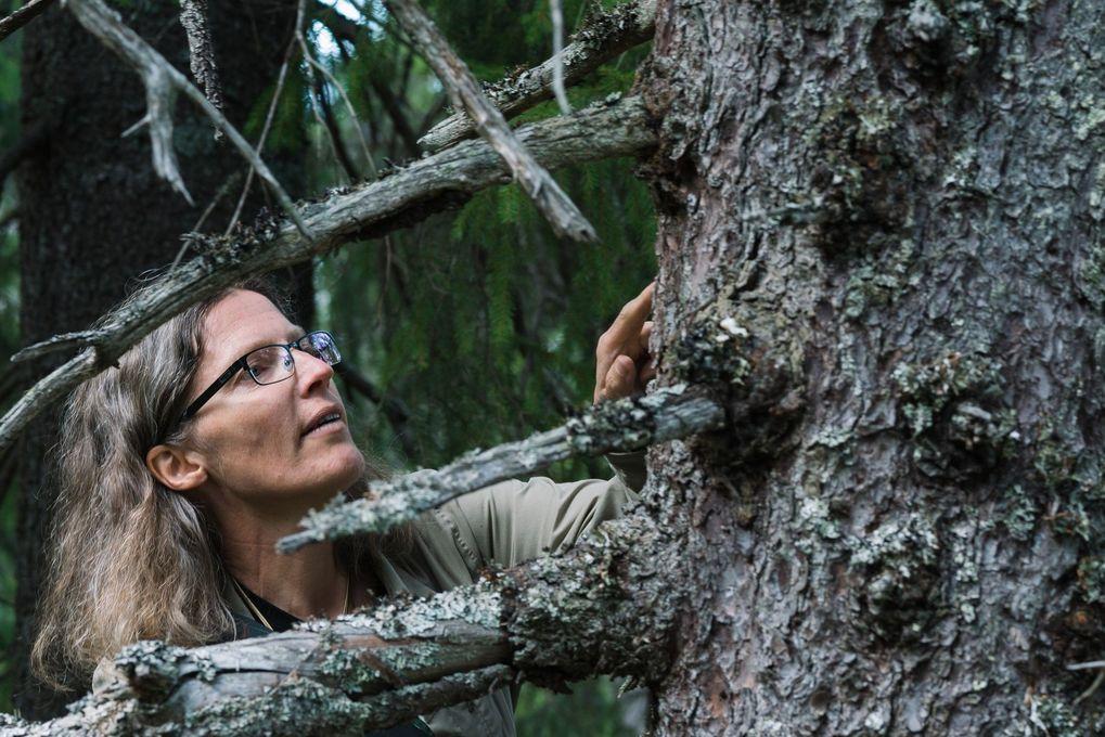 Professor Anne Sverdrup-Thygeson er en av Norges mest produktive formidlere de siste årene. Foto: Celina Øier, Stilton Lit. Agency