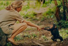 Jane Goodall. Foto: National Geographic.
