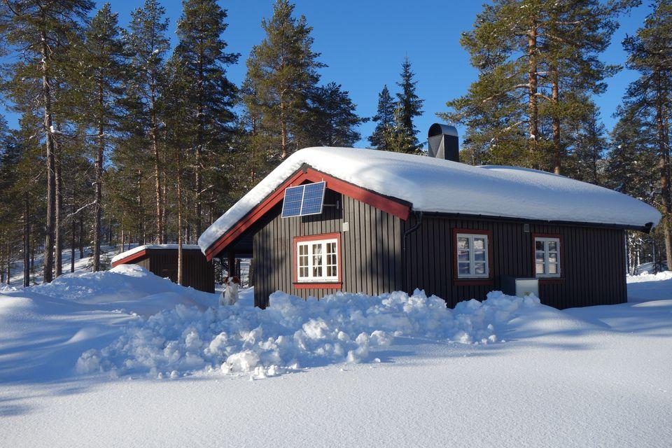 Feragsdambua Foto: Bernt Iversen