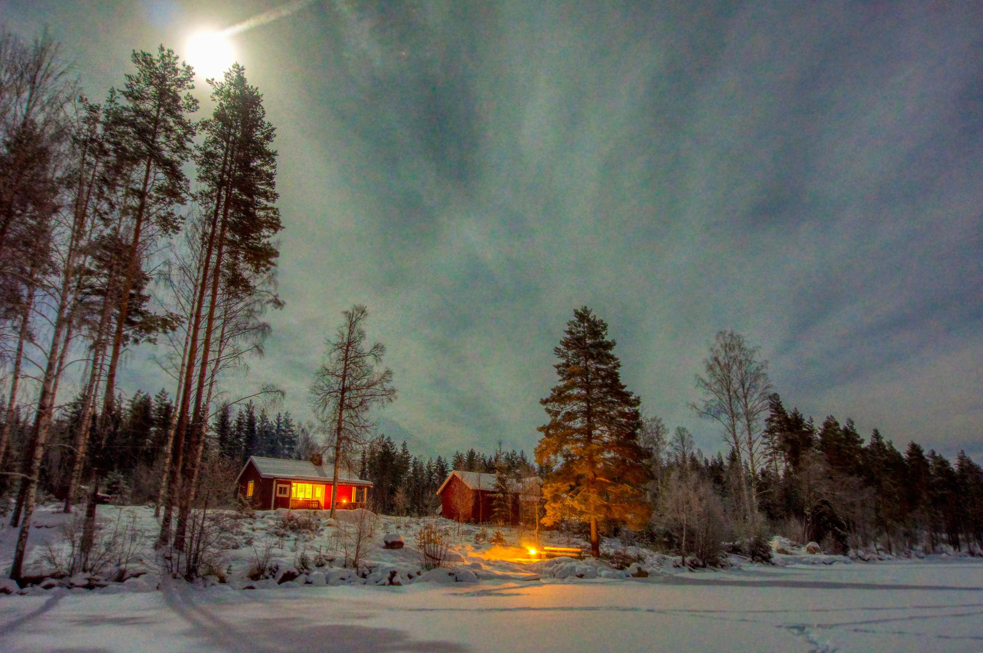 Nordre Borthuskoia Foto: Torkel Skoglund