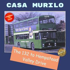 Singelcover for «The 132 to Hempstead Valley Drive»