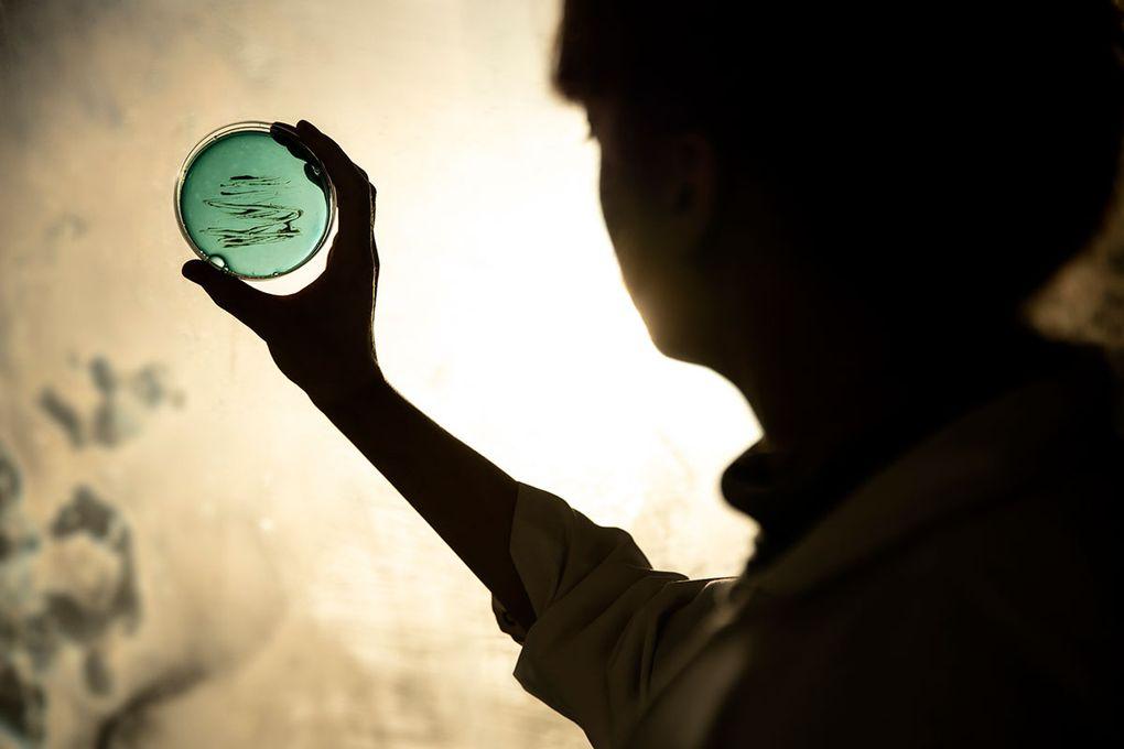 I tøff konkurranse med over to tusen andre får 260 forskerne nå muligheten til å flytte forskningsfronten med en konsentrert innsats i prosjektene sine de neste tre til seks årene. Forskningsrådet investerer opp til 12 millioner i hvert prosjekt. (Foto: Jonas Bendiksen)